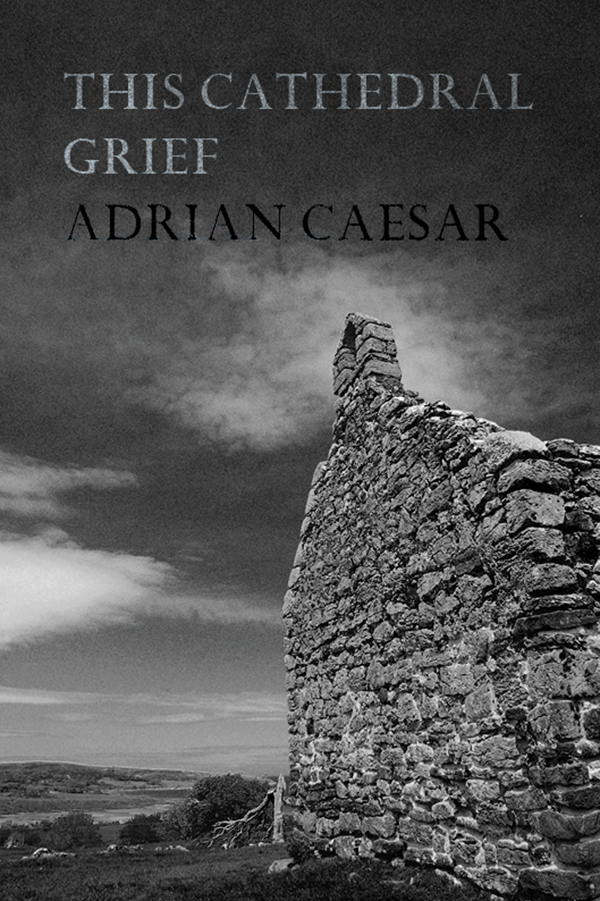 This Cathedral Grief by Adrian Caesar